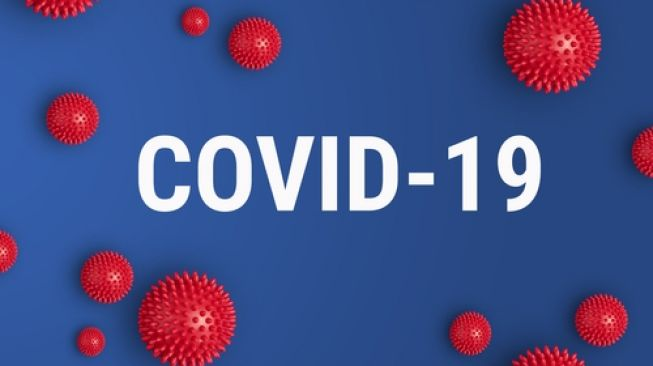 3 WNI kru Kapal Diamond Princess Positif Terinfeksi Covid-19